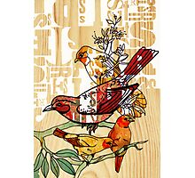 letterpress birds Photographic Print