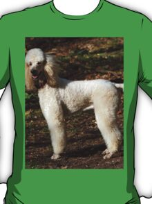 Special Poodle Toy T-Shirt