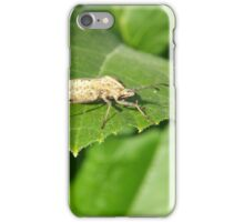 Insect on a green leaf iPhone Case/Skin