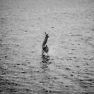 Splash! by jamjarphotos