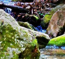 River's Run by solareclips~Julie  Alexander