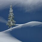 Snow Covered Tree and Mountains by David Dehner
