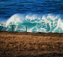 Mutant wave by Brandon Brown