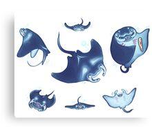 manta rays Canvas Print