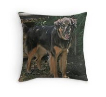 Penny Throw Pillow