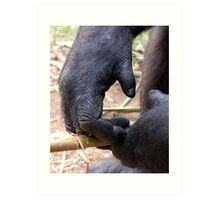 Gorilla Hands Art Print