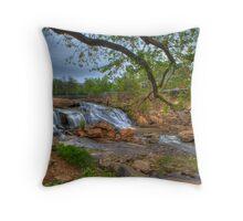 2074 - Reedy River Falls Throw Pillow