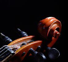 Violin by vaskoni