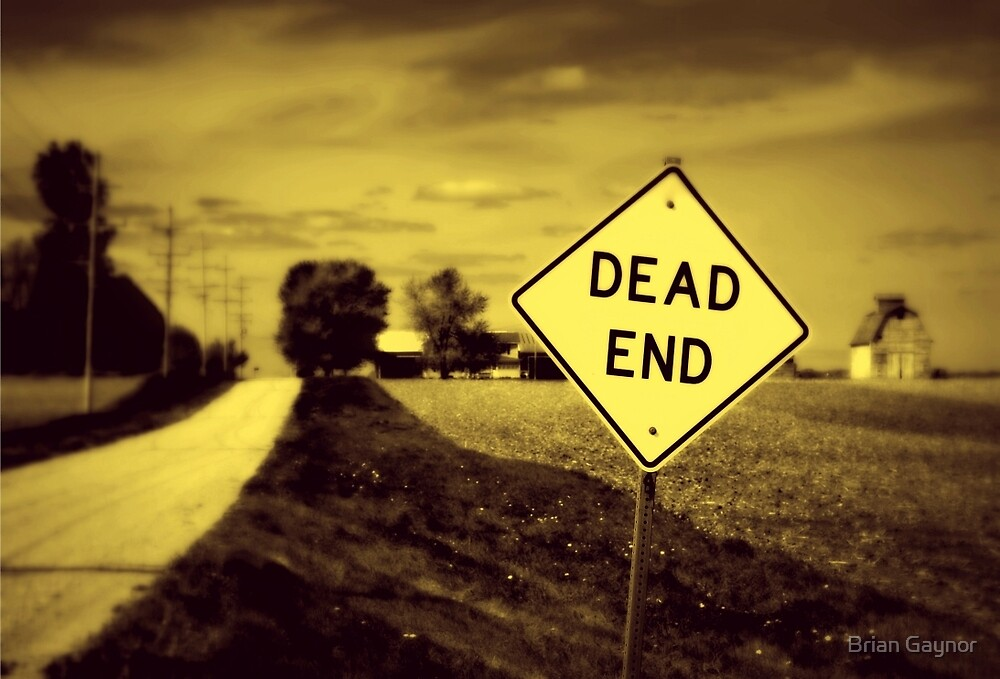 Dead End by Brian Gaynor