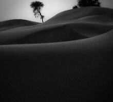 Find Reality by Daniel Nahabedian