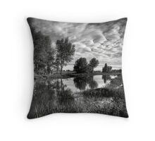 Rio I Throw Pillow