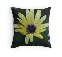 Raindrops on yellow petals Throw Pillow