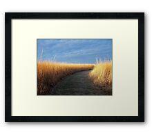Path of Light Framed Print