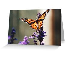 The Lilac Monarchy Greeting Card