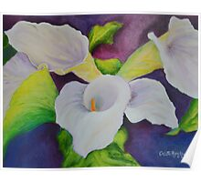 Callas That Were A Gift Poster
