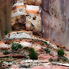 geologic palette by Robert C Richmond
