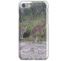 Three Roo's iPhone Case/Skin