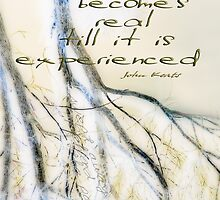 Expressions of Substance © Vicki Ferrari Photography Calendars by Vicki Ferrari