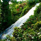 Jamaican Waterfall by Dan Shiels