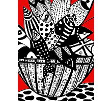 Fish in The Basket Photographic Print