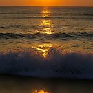 A Frozen Morning Curl............. by Larry Llewellyn