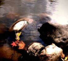 River Stones by Hope Ledebur