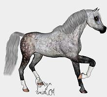 Dapple Grey Arabian by RaptorGirl