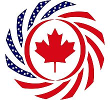 Canadian American Multinational Patriot Flag Series 1.0 Photographic Print