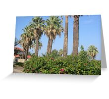Palm Trees by the Swimming Pool, Woodlawn Lake & Park, San Antonio, Texas (City) Greeting Card