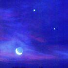 Cosmos by Neophytos