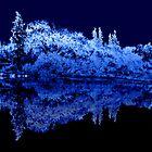 moonlight night by wnichol