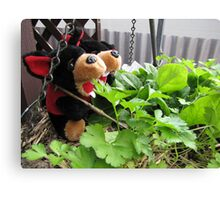 RnR gardening the spinach, tomatoes and herbs Canvas Print