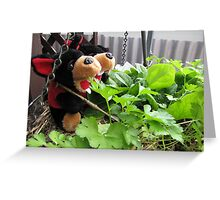 RnR gardening the spinach, tomatoes and herbs Greeting Card