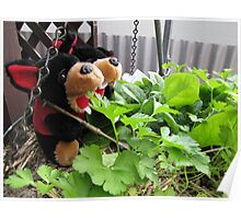 RnR gardening the spinach, tomatoes and herbs Poster