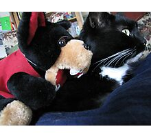 RnR cat capers ... best friends after all Photographic Print