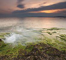 Green Earth by Kostas Petrakis