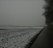 Lonely bike path beside snowy field by Ireentje