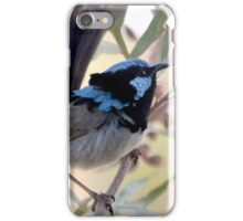 Blue Fairy Wren iPhone Case/Skin