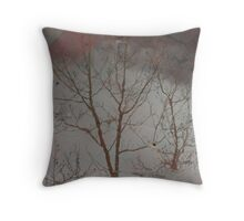 Reflected winter Throw Pillow