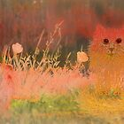 orange kitten by Marianna Tankelevich
