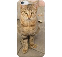 Cute Tabby Street Cat iPhone Case/Skin