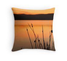 Orange Reeds Throw Pillow