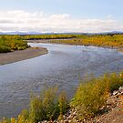 Bend in the River - 12265 by BartElder