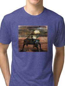 Gondolier`s sonata Tri-blend T-Shirt