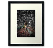 Banyan Trees Pt 2 Framed Print