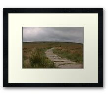 The Path To Nowhere! Framed Print