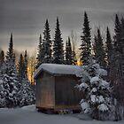 Winter Solitude by Heather  Waller-Rivet  IPA