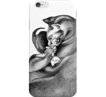 Cat and Kittens iPhone Case/Skin
