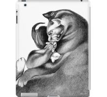 Cat and Kittens iPad Case/Skin