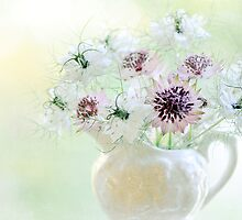 Love in a Jug by Jacky Parker